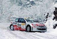 peugeot_206_WRC_2001.jpg