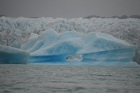 IMG_2898_Seward_Iceberg 3 with hole.jpg