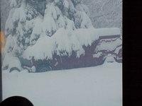 snow 4-25-08.JPG