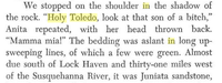 Holy Toledo3.png