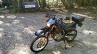 DR650_Stinchfield_Woods.jpg