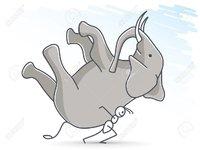 70435987-ant-carrying-an-elephant.jpg