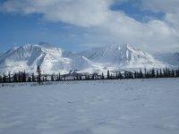 Denali trail view 1.jpg