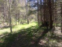 Tour of the Zuni Trail.JPG