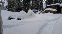 Snowmobiles Feb 2018.jpeg
