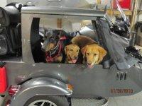 charlie hyde dogs.jpg
