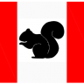 SquirrelO