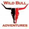1Wildbull1