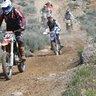 LB Rides