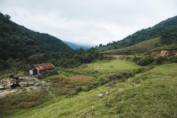 Bad experience in Khonoma Village, Nagaland