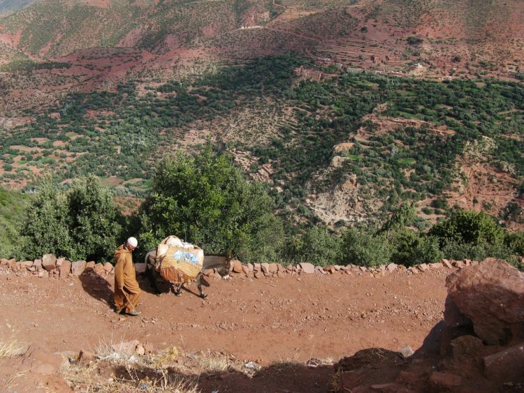 Riding in Morocco: What Not to Miss www.advrider.com