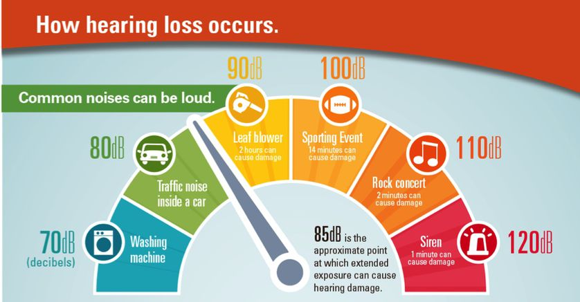 https://media.mnn.com/assets/images/2017/02/how-hearingloss-occurs.jpg.838x0_q80.jpg